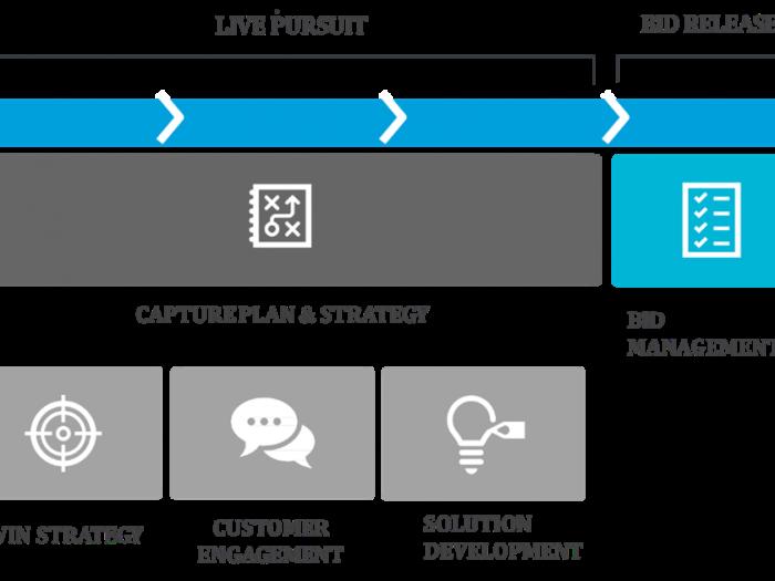 Strategic pursuits and the capture management process